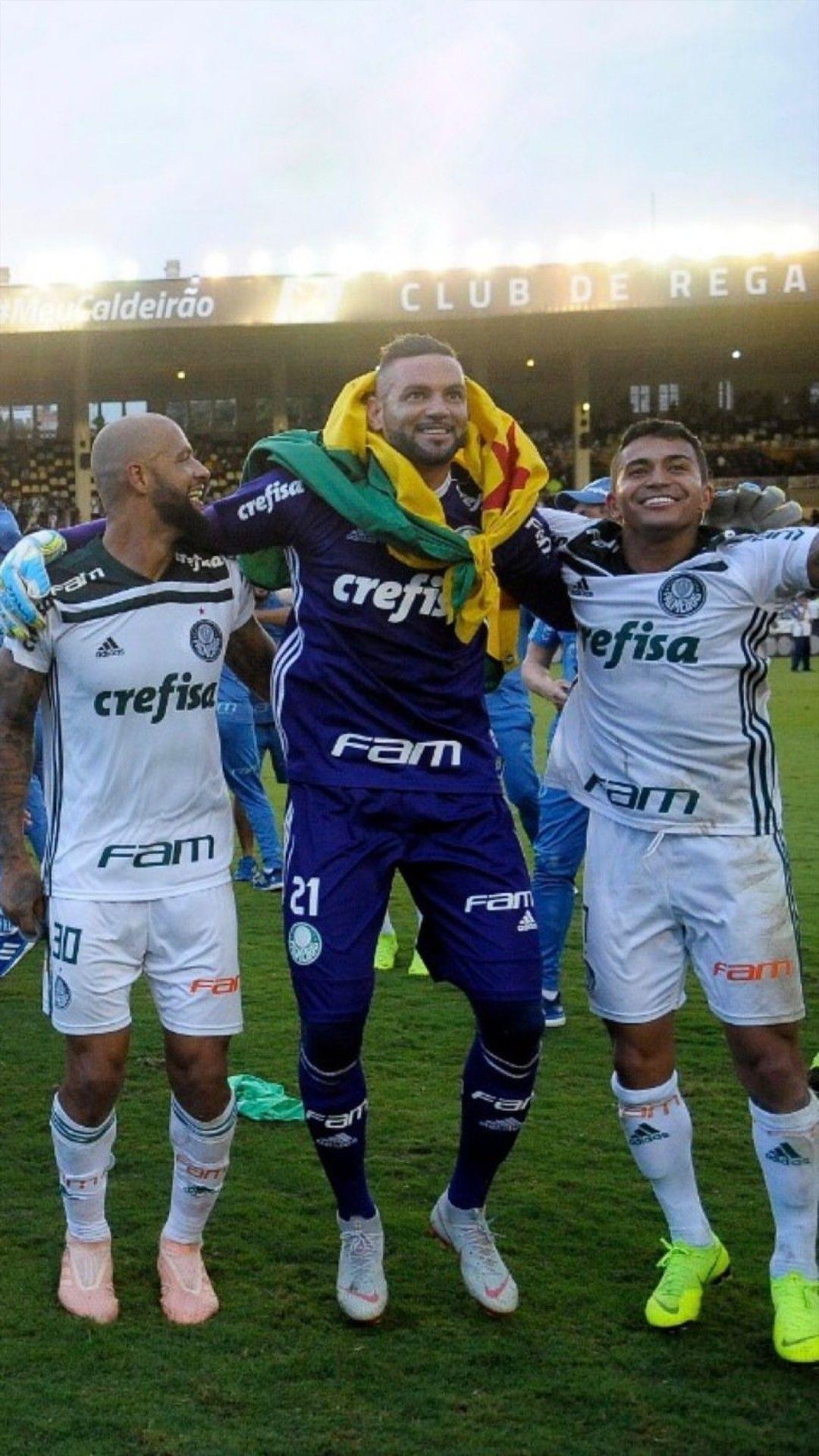 Palmeiras e4d1b03f146b7