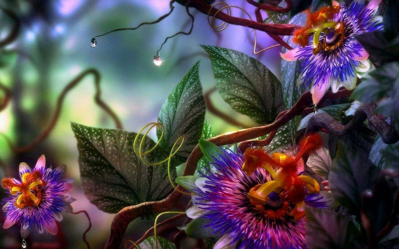 Top 10 3d Abstract Flowers Wallpapers Tin Pinterest Flowers
