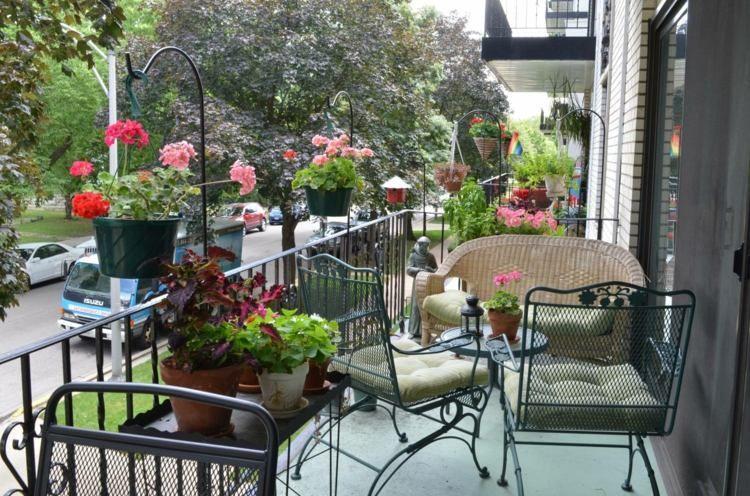 diseo de terraza con plantas de exterior