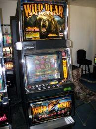 Wild bear salmon run slot game wynn casino oklahoma
