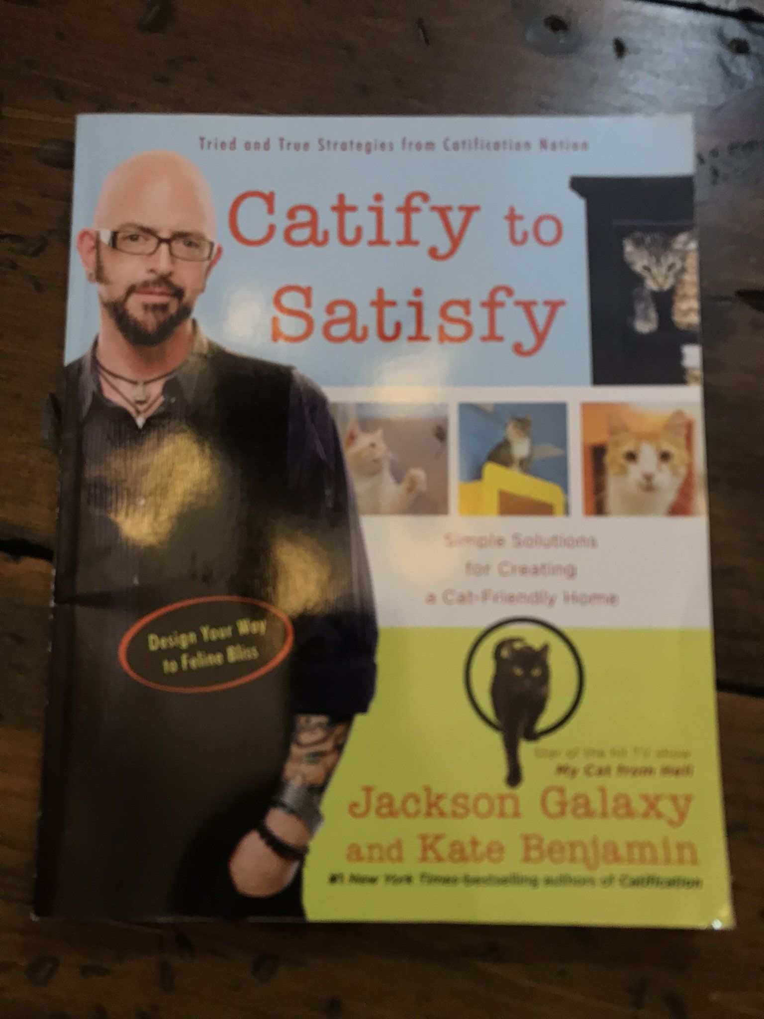 CATIFY TO SATISFY DOWNLOAD