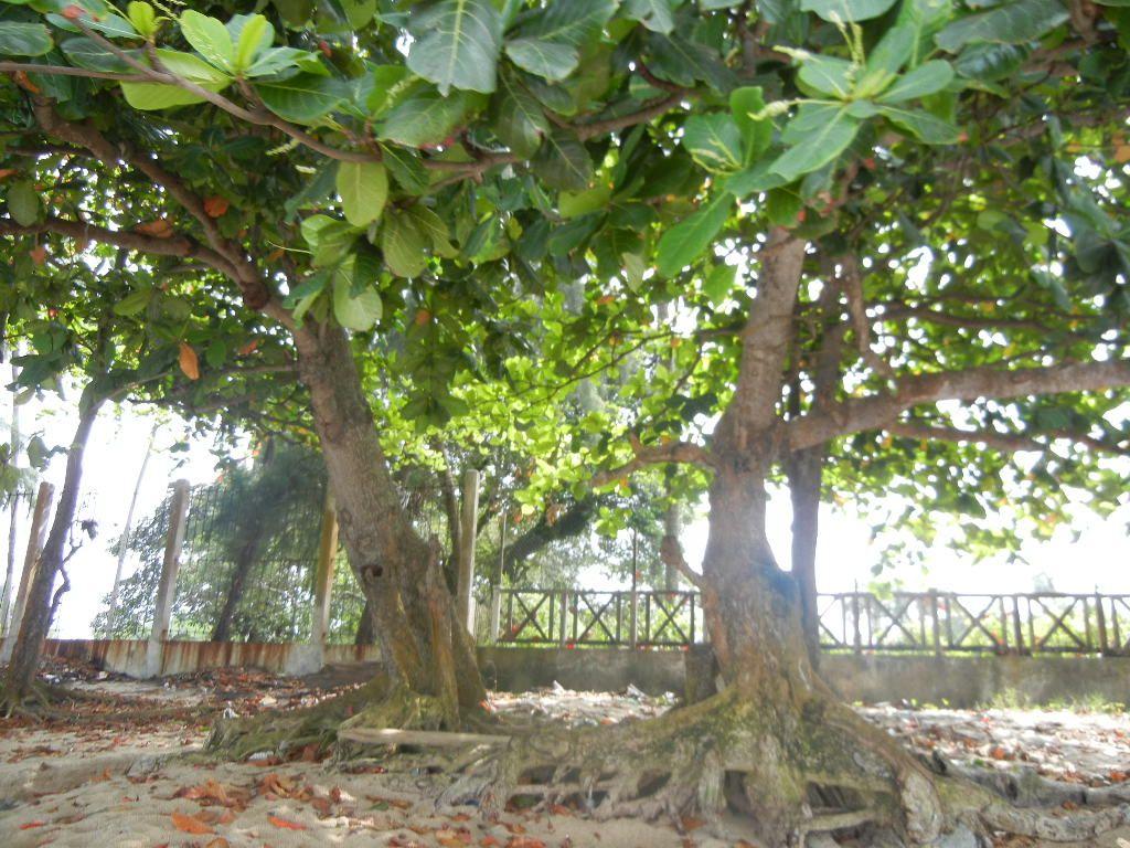 Libreville Gabon Gabon Libreville Afrique