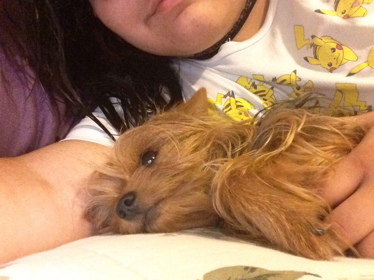 Best cuddle buddy