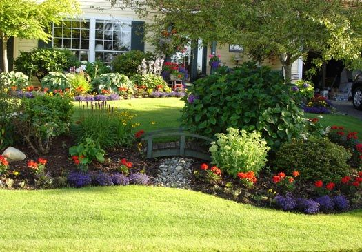large shaded front yard landscaping