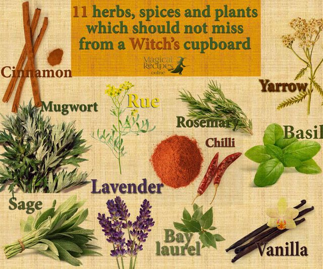 Which 11 herbs, spic
