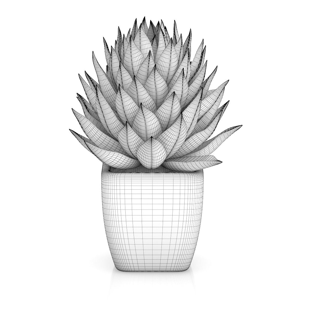 Small Plant in White Pot 1 Small plants, Plant drawing