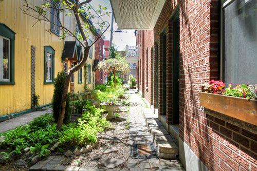 Créer sa propre ruelle verte à Montréal: pas si compliqué!   NIGHTLIFE.CA