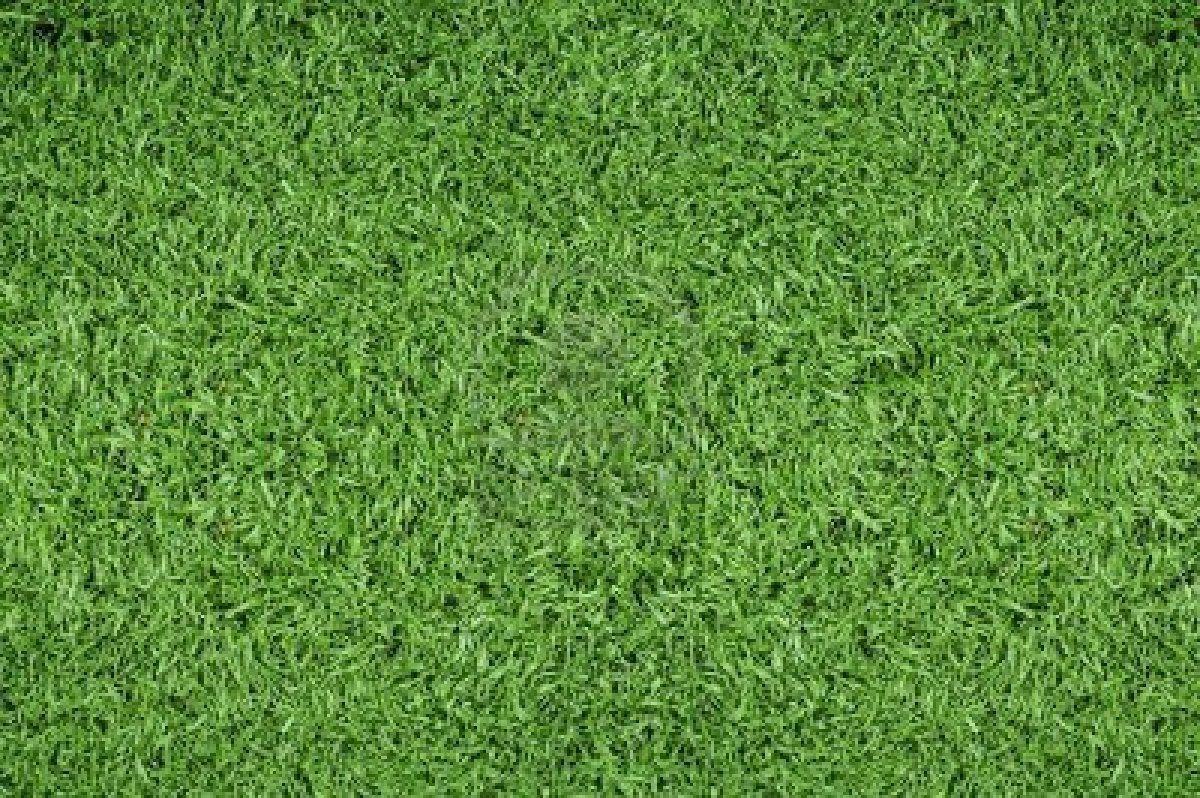 Soccer Field Wallpaper For Mac Rpo Grass Textures Grass Pattern Artificial Grass