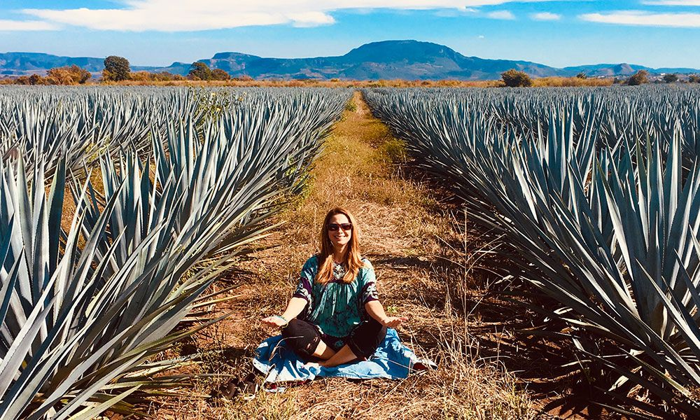 Saratoga Springs' One With Life Organic Tequila Wins Big At Florida Margarita Festival - Saratoga Living