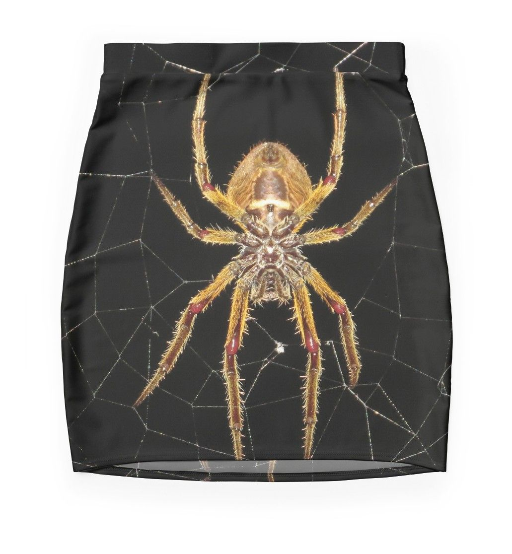 flat #miniskirts #insect #macro #spider #colombia #tarantula