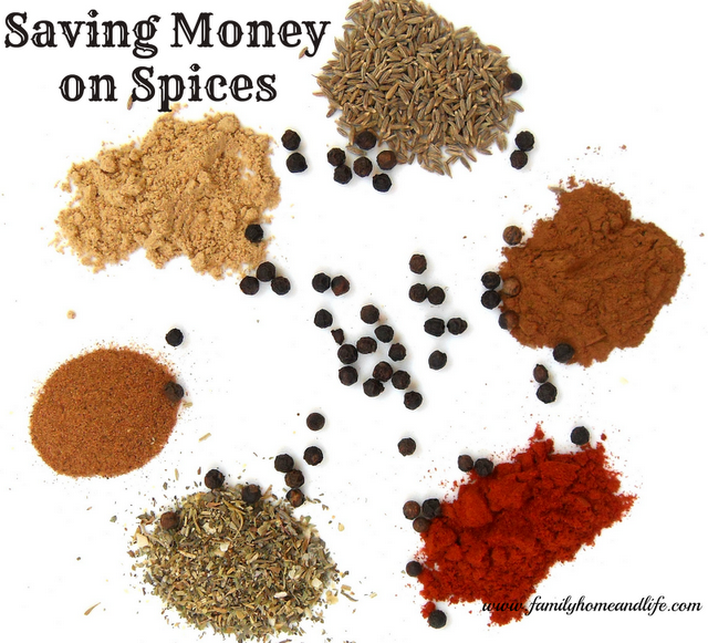 Family Home and Life Saving Money on Spices Saving