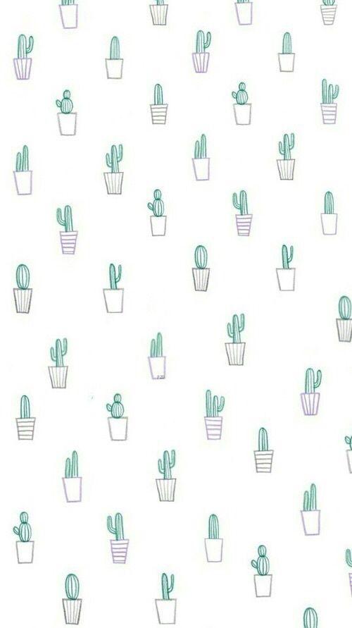 Aesthetic Cactus Wallpaper : aesthetic, cactus, wallpaper, Imagen, Cactus,, Background,, Wallpaper, Phone, Images,, Patterns, Wallpaper,, Iphone, Background