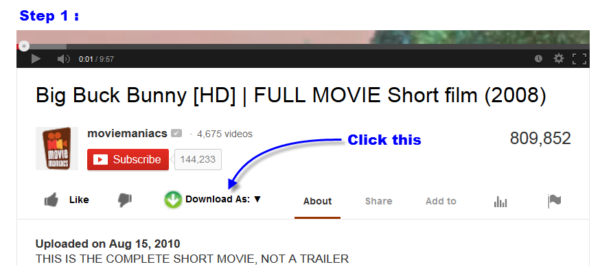 Easy YouTube Video Downloader is the easiest Youtube video