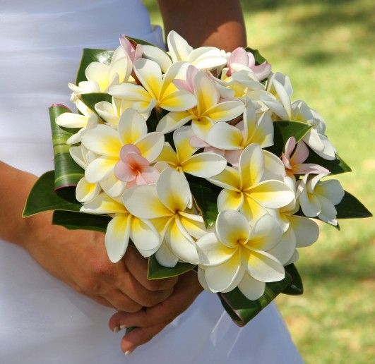 Tropical Wedding Bouquet Frangipani Wedding Yellow Bridal Bouquets Tropical Wedding Bouquets
