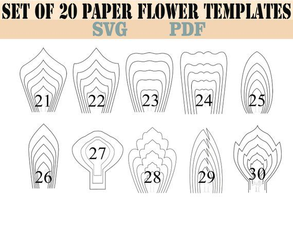 Bundle 2 All 20 Pdf Svg Diy Giant Paper Flower Template