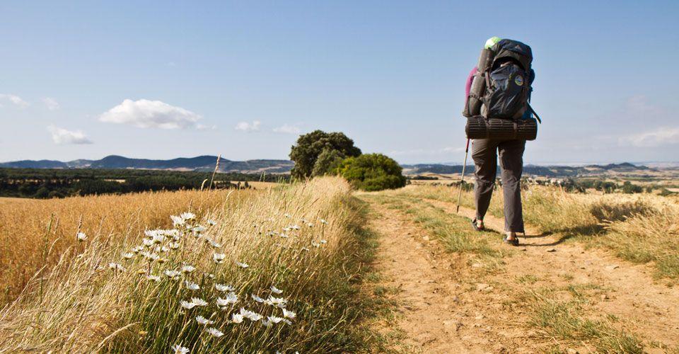 Hiking The Camino De Santiago Camino Francés Camino Finisterre Guidebook Ahhhhhhh Camino De Santiago Logrono Northern Spain