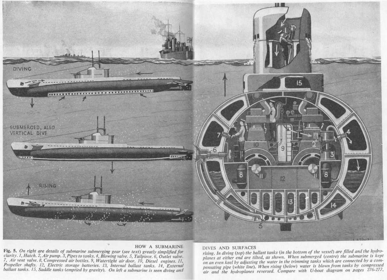 How a submarine dives and surfaces submarines pinterest cutaway pooptronica