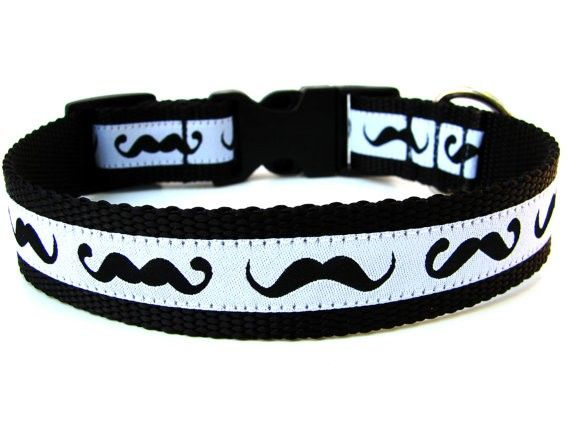 Funny Dog Collars Home Fun Mustache Dog Collar Mustache Dog