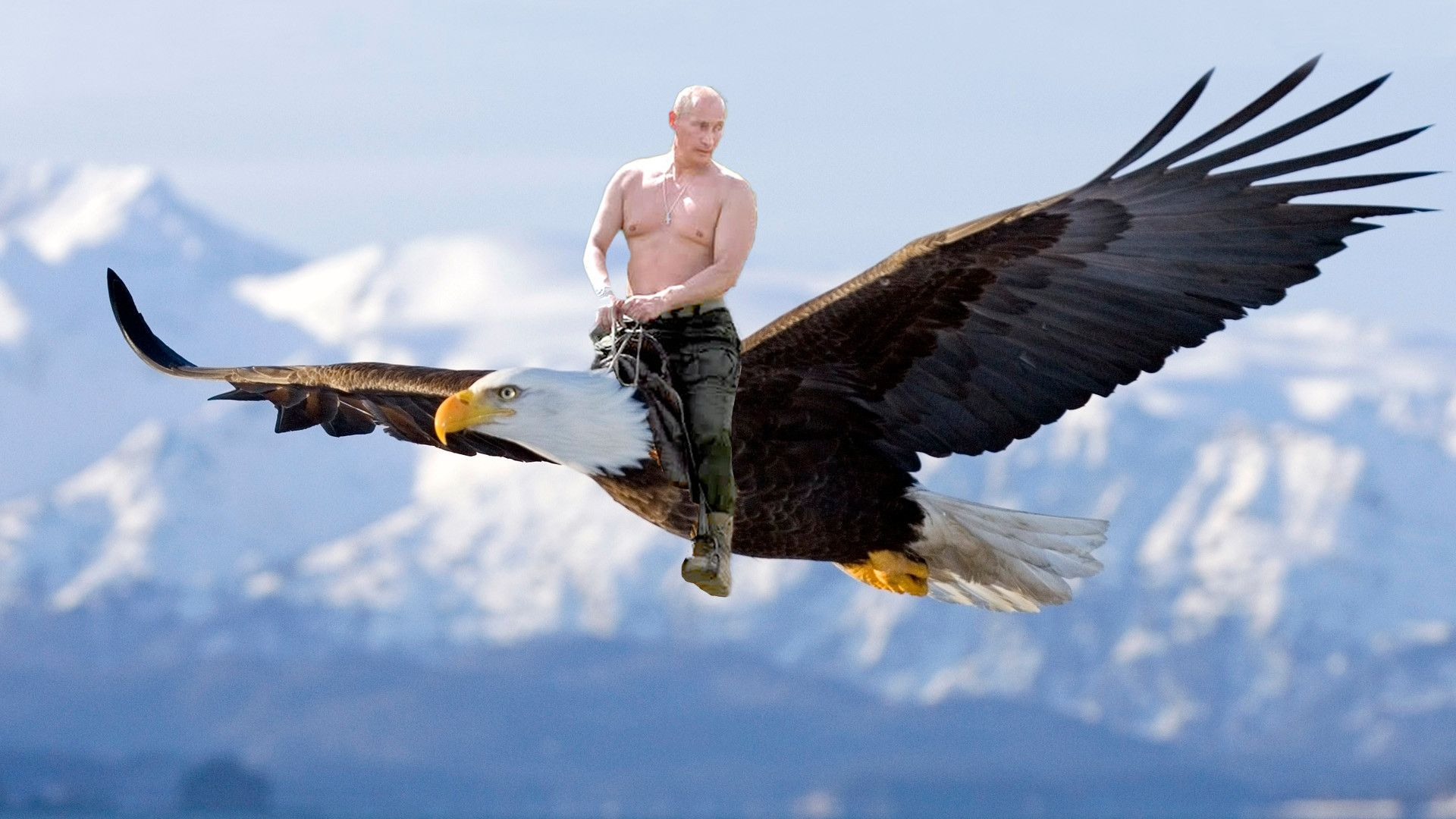 Image result for Russian bear vs bald eagle