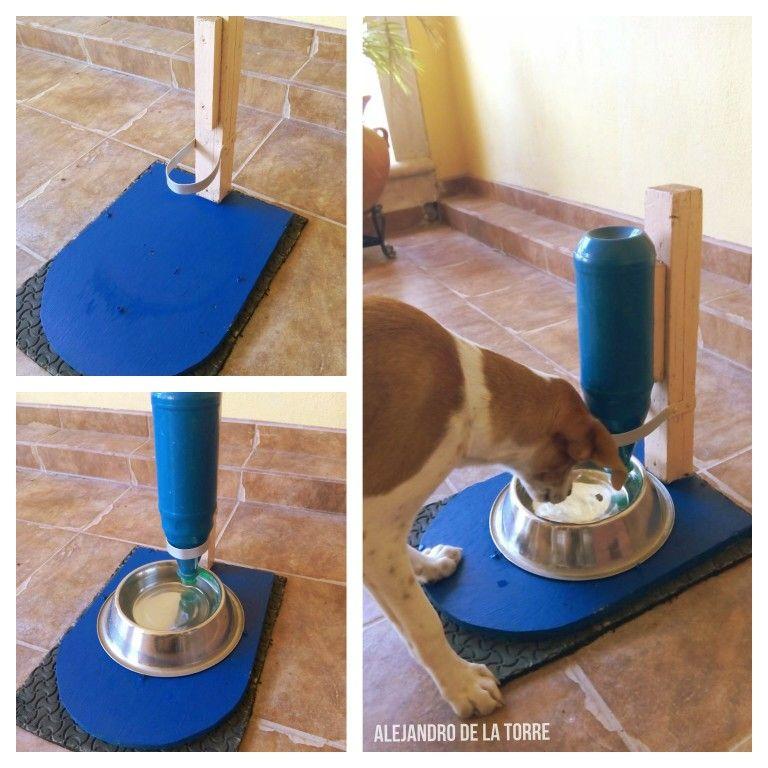 Dispensador de agua para perros bebedero para perros o - Contenedor de agua ...