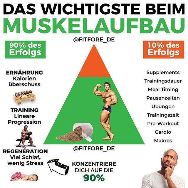 """FITNESS ERNÄHRUNG ABNEHMEN auf Instagram: """"DAS WICHTIGSTE BEIM MUSKELAUFBAU"""" -  DAS WICHTIGSTE BEIM..."""