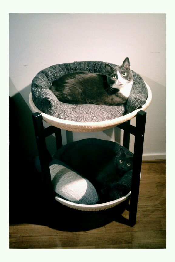 7 ikea hacks your cats will love tiere pinterest katzen haustiere und katzen bett. Black Bedroom Furniture Sets. Home Design Ideas