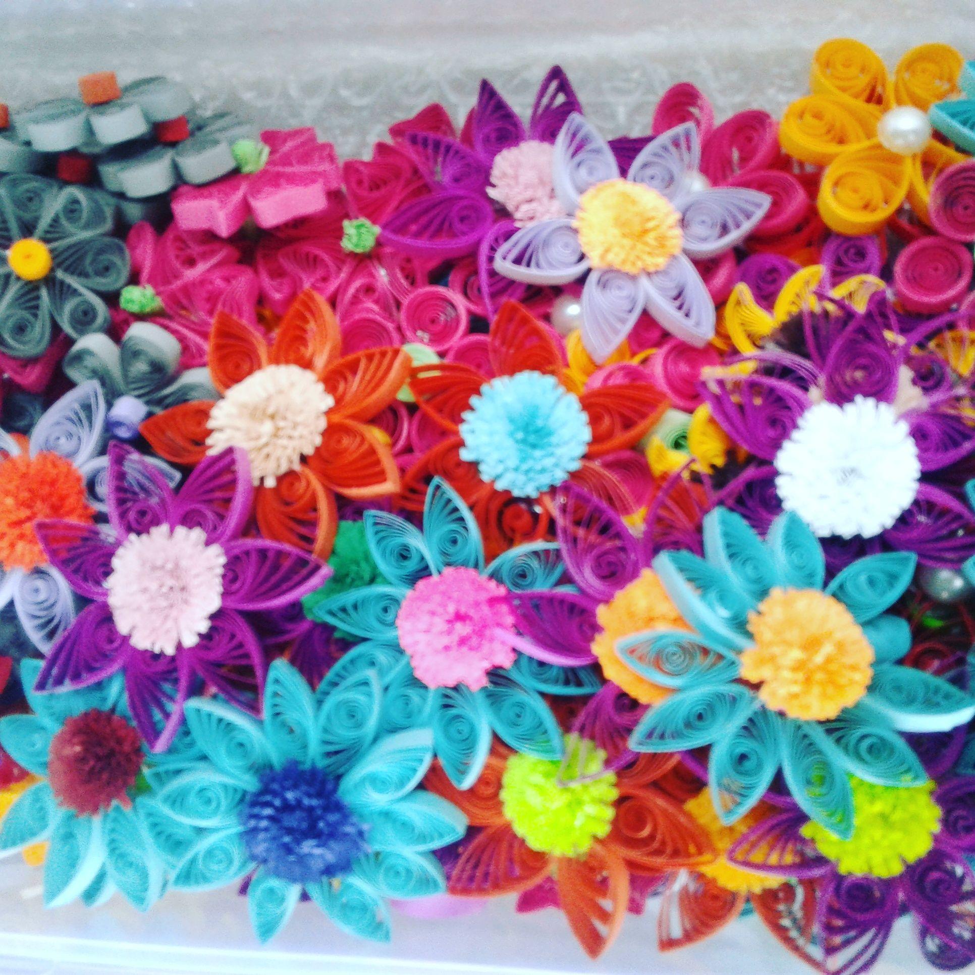 Paper Quilling Flowers Paper Flourishes Pinterest Paper
