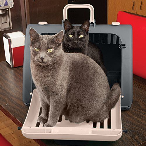 SportPet Designs Cat Carrier Front Door Plastic
