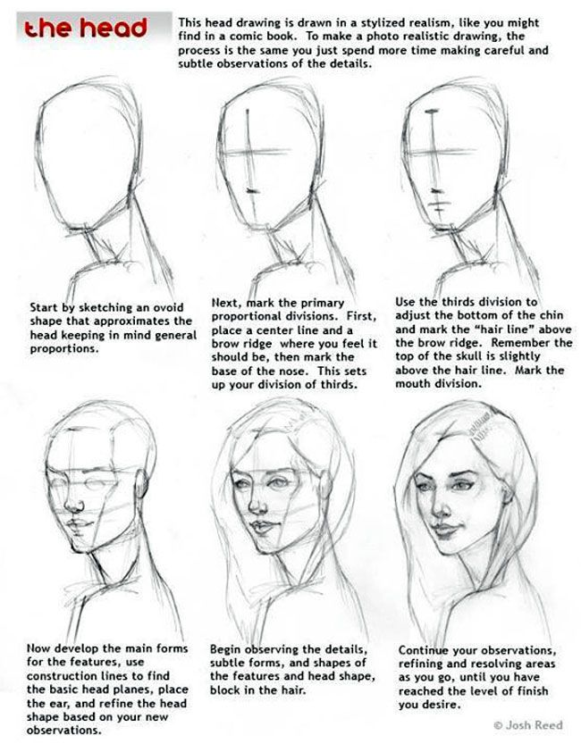 How to draw the head