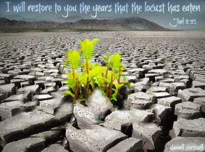 """Our next season........ """"I will restore to you the years the locust has stolen"""" . . . . . """"And I will restore to you the years that the locust hath eaten, the cankerworm, and the caterpiller, and the palmerworm, my great army which I sent among you."""" (Joel 2:25, KJV)"""