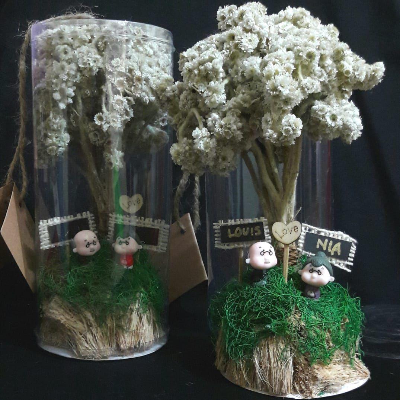 Bunga Edelweis Bunga Abadi Tipe Bunga Edelweis Tabung Kakek Nenek Eksklusif Cocok Sebagai Kado Unik Untuk Pasangan Atau Sahabat And Bunga Pernikahan Tabungan