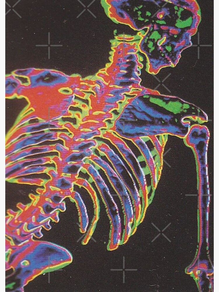 trippy skelly Photographic Print