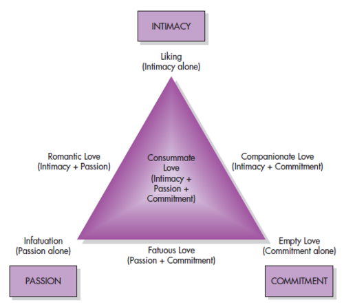 Sternberg triangle of love theory