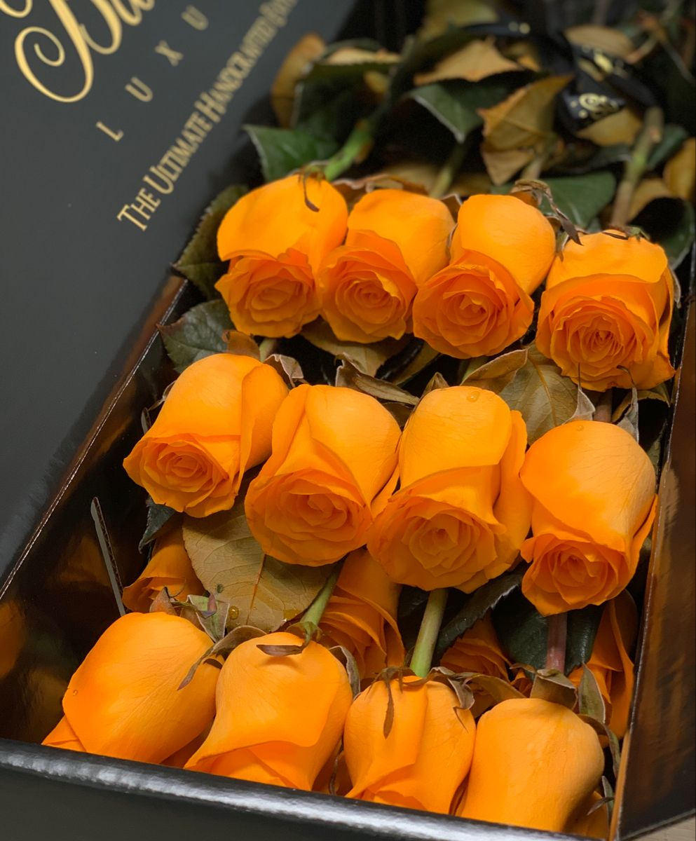 Long Stem Luxury Roses in a Box Free Overnight Delivery