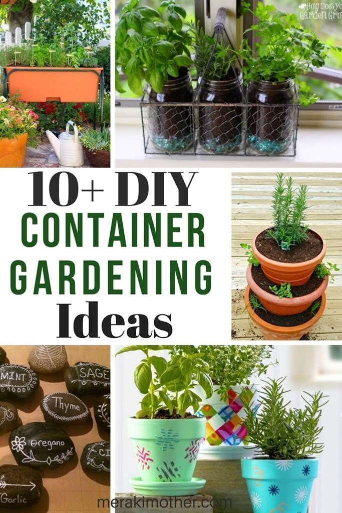 container gardening ideas, herb garden indoor, herb garden ideas ...