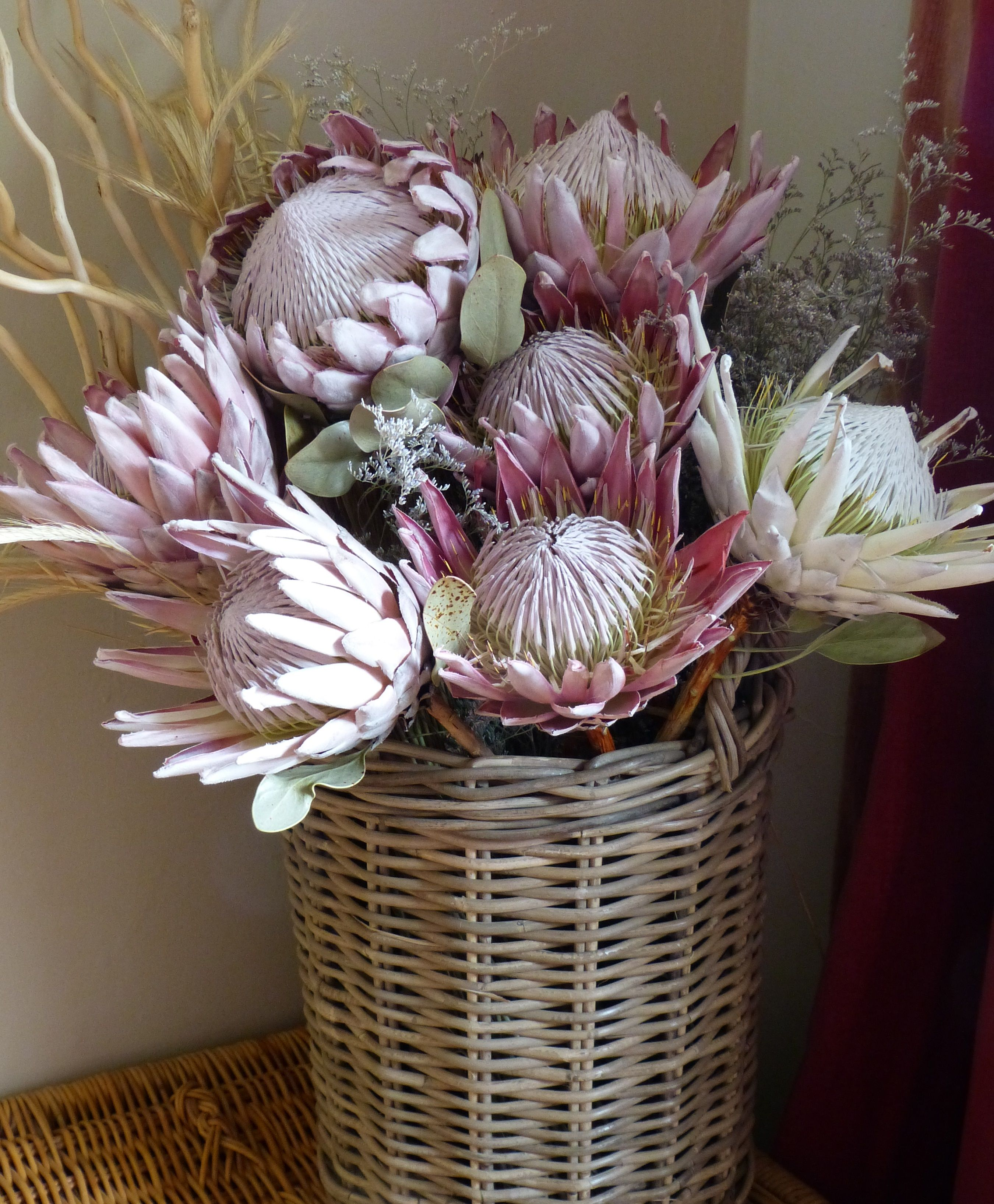 Outstanding King Proteas To Liven Up Your Entrance Hall Www Petalmania Co Za Freeze Dried Flowers Beautiful Floral Decor Dried Flowers