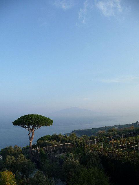 Villazzano, Campania, Italy