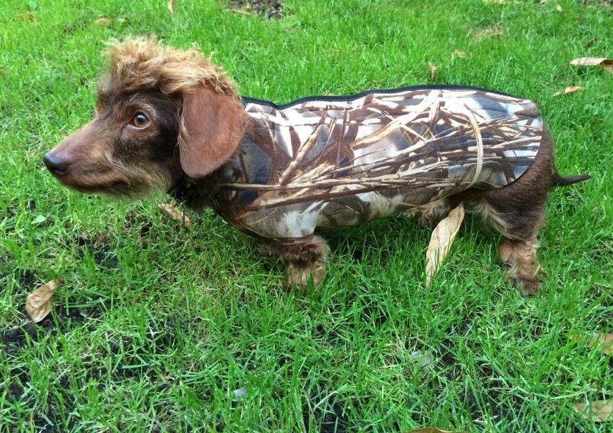 Neoprene Dog Wetsuit Coat Plain Or Camouflage Pattern Dog