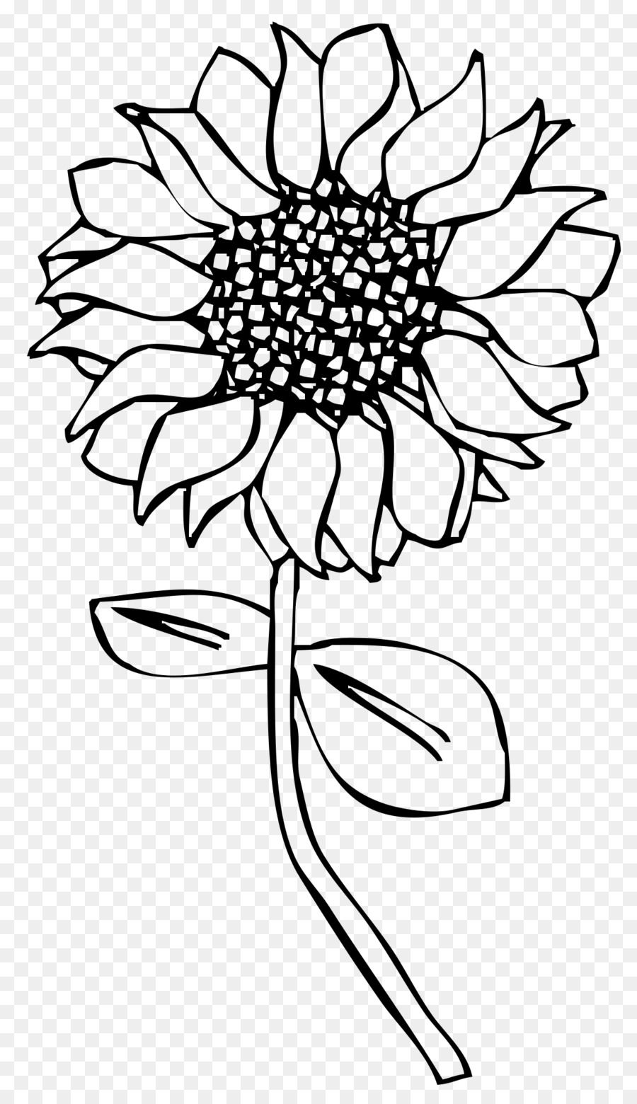 Line art Drawing Common sunflower Embroidery