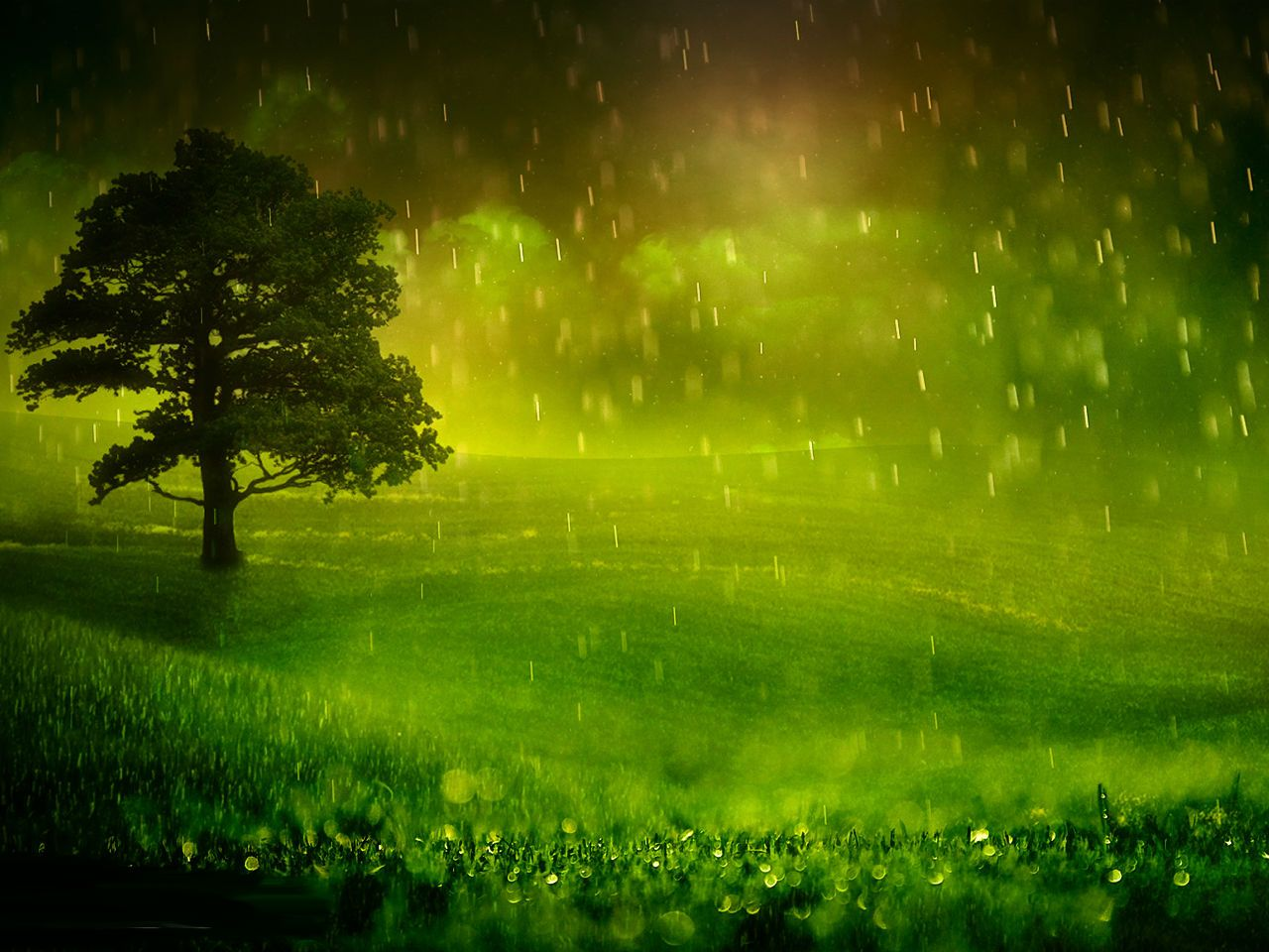 Hd wallpaper rain - Rainy Day Wallpaper Rainy Day Hd Wallpapers Pictures Images Backgrounds