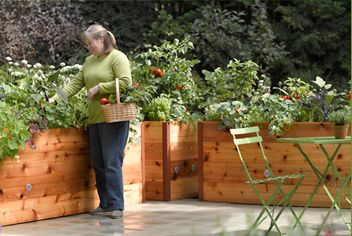 Fabulous raised beds, for those who are over the whole bending thing!