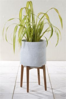 Tall Concrete Planter With Wooden Legs Tall Planters Large Indoor Plants Planters