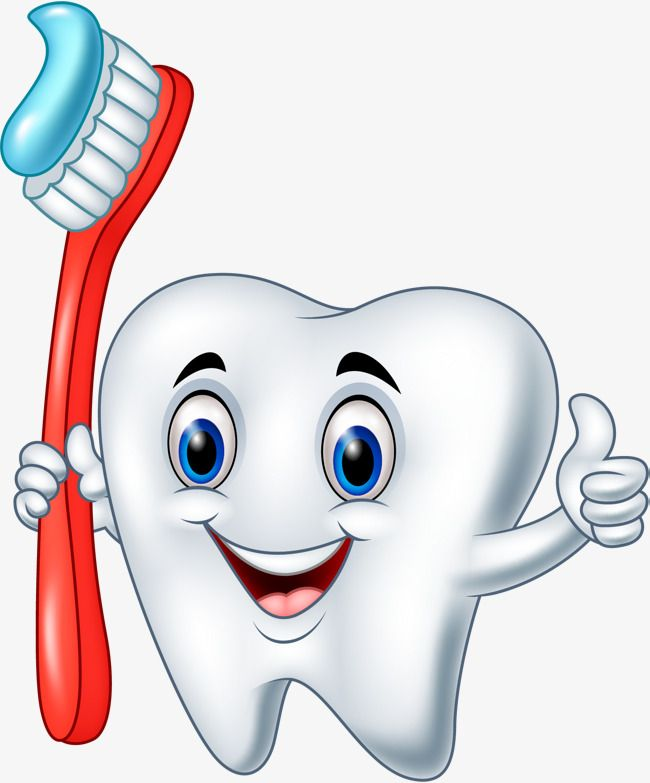 Toothbrush clipart. Free download transparent .PNG | Creazilla