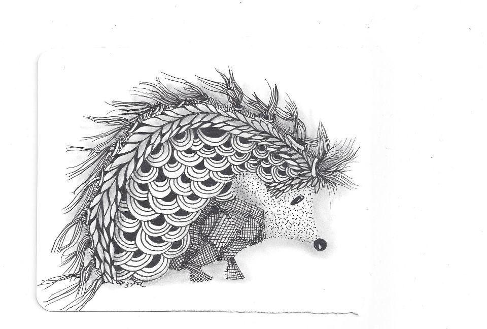 Line Drawing Hedgehog : A hedgehog zentangle by my friend marta drennon