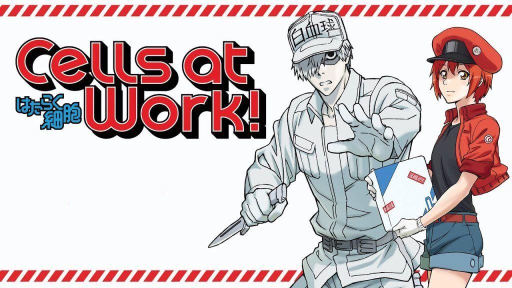 Hataraku Saibou! (Cells at Work) Anime