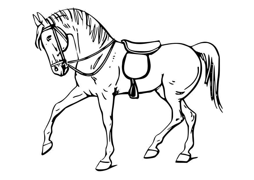 Caballo para colorear | horses | Pinterest | Colorear, Caballos y ...