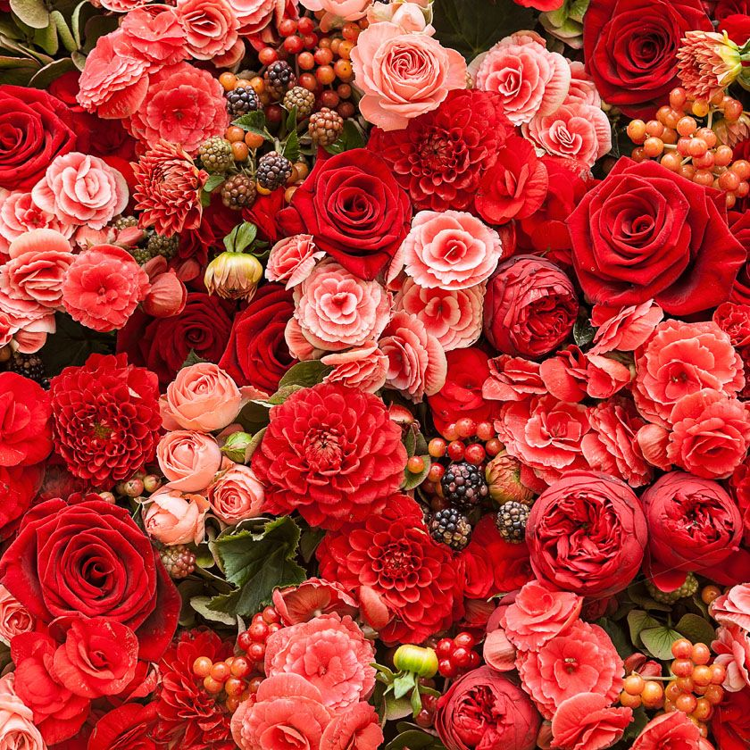 Red Flowers Tumblr Background 1 Hd Wallpapers Ideas For The House