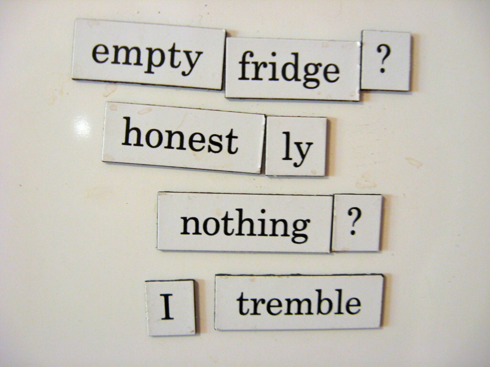 Image result for Refrigerator magnet poetry