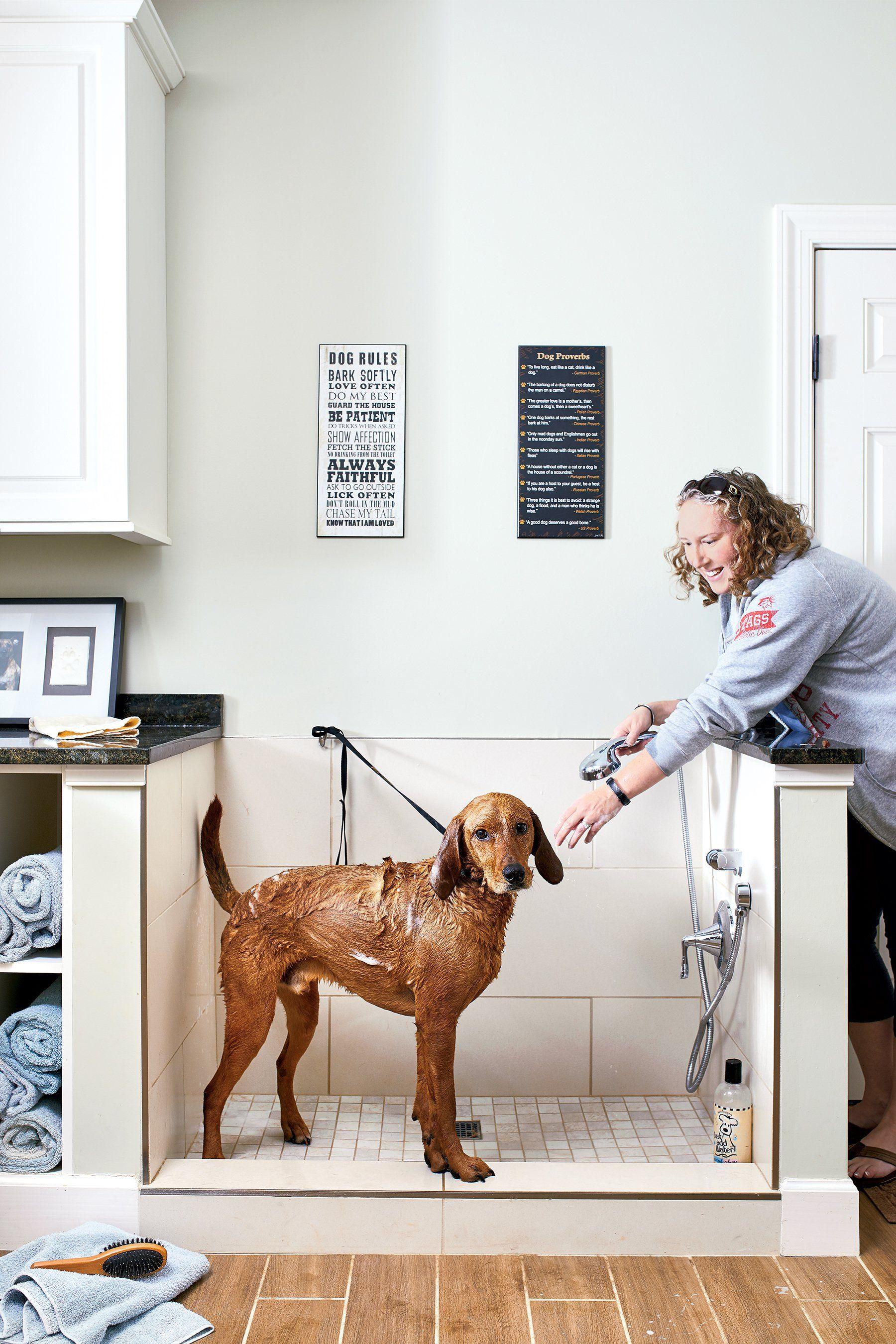 Look Inside Two Washington Houses Designed For Doggos Dog Shower Dog Rooms Dog Washing Station