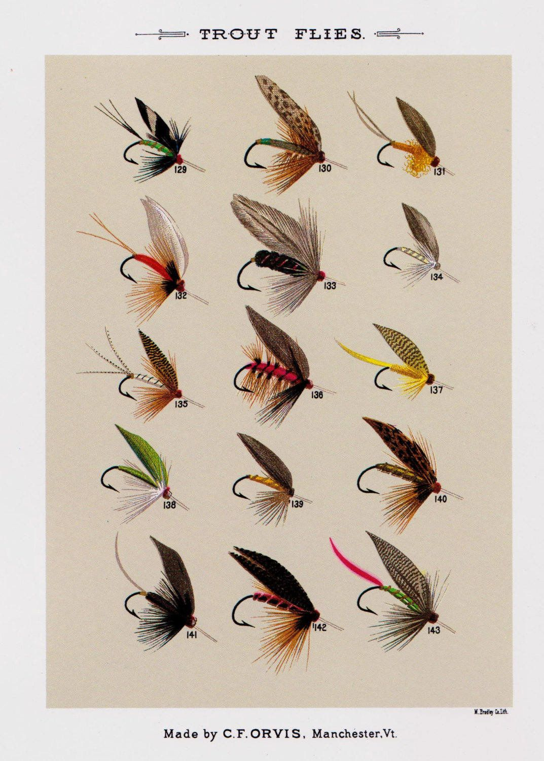 Vintage Fly Fishing Lure Print Trout Flies Beach House Decor Cabin Wall Art Gift For Fisherman Dad Brother 3802p By Plaindealing On Etsy